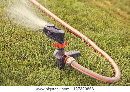 Garden Lawn Sprinkler In Action 5