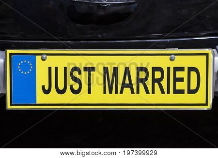 Just Married Euro License Plate