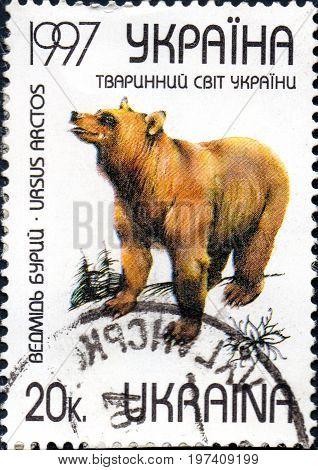 UKRAINE - CIRCA 2017: A postage stamp printed in Ukraine shows Brown bears - Ursus Arctos. Series Animal World of Ukraine circa 1997