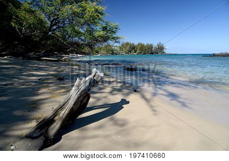 Wooden Details Of Natural Decorations At Beautiful Puako Beach
