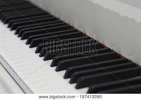 fragment of a black-and-white piano keyboard closeup