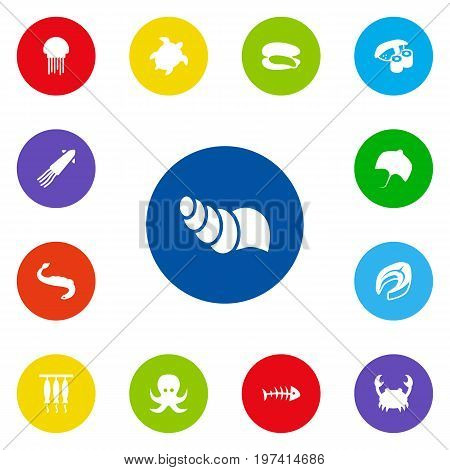 Collection Of Sink, Japanese Roll, Devilfish And Other Elements.  Set Of 13 Seafood Icons Set.