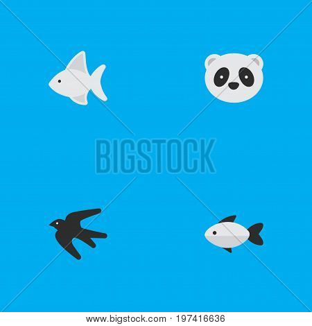 Elements Bear, Fish, Sparrow And Other Synonyms Swallow, Panda And Fish.  Vector Illustration Set Of Simple Fauna Icons.