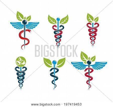 Aesculapius vector abstract illustrations collection Caduceus symbols composed with green leaves and bird wings for use in medical treatment.