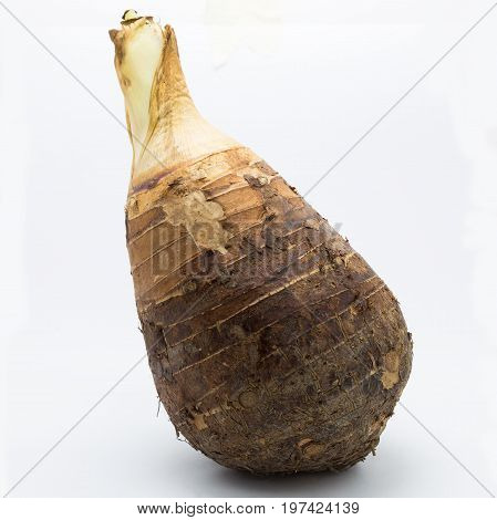 Fresh Root Taro on white background Isolated