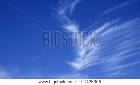 Wispy Clouds against a blue sky in the afternoon
