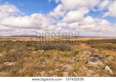 Rocks and vegetation on Serra da Canastra Serra da Canastra National Park is a national park in the Canastra Mountains of the state of Minas Gerais Brazil.