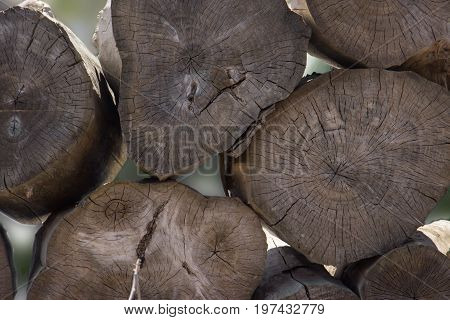 Stacked Tree Wood Logs Background. Abstract Photo Of A Pile Of Natural Wooden Logs Background, Top V