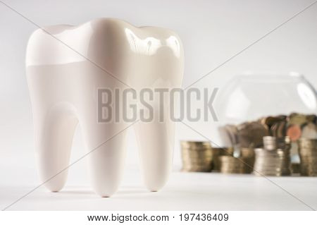 White healthy human enamel tooth model and glass piggy box with stacked coins isolated on white background with copy space. Financial Concept Dentist Money concept. Whitening of tooth enamel