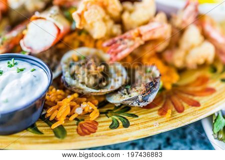 Macro Closeup Of Clams And Seafood On Plate With Tartar Sauce