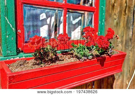 Colorful French Windowsill Painted In Red And Green With Gerainum Pelargonium Flowers