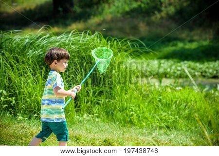 Adorable Caucasian kid playing with scoop-net on the meadow on warm and sunny summer or spring day. Active leisure time for children. Kid boy having fun hunting for butterfly and bugs.