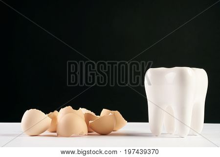 White healthy human tooth model and eggshell isolated on black background with copy space. Concept of healthy nutrition for strengthening teeth
