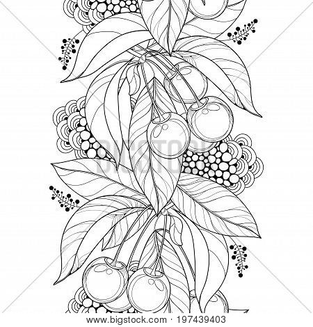 Vector seamless pattern with outline ripe Cherry, berry and leaf in black on the white background. Vertical border with cherry fruit and foliage in contour style for summer design and coloring book.