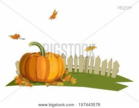 Illustration of a pumpkin near a fence and falling leaves on a lawn. Flat design style. Thanksgiving Day. Autumn.