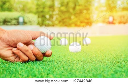 golfer is pick golfball in the golf course