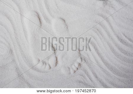 The prints of women's legs on the floor in the salt room. Toning.