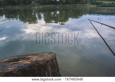 Stump on a pond with a blurred background