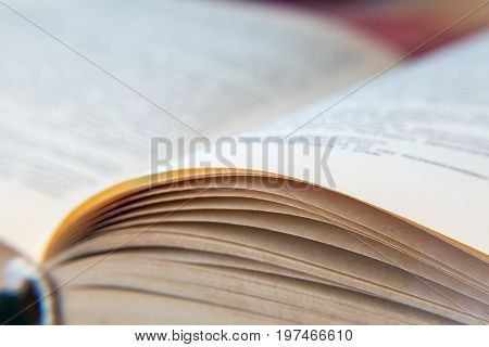 Open old book. Yellowed pages. Paper texture. Macro