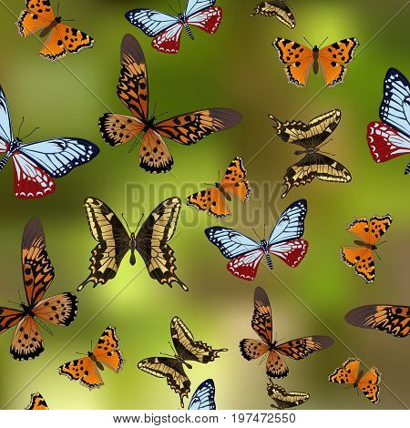 Texture Butterflies. Realism style execution Background. Realistic