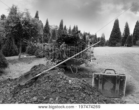 Wheelbarrow With Garden Waste At A Park