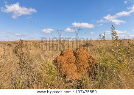 Termite mound and Energy Towers. Serra da Canastra National Park is a national park in the Canastra Mountains of the state of Minas Gerais Brazil.