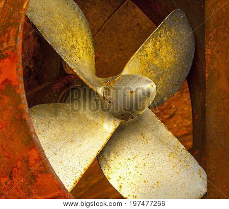 Ship propellers of a marine ship which stands in a dry dock for repair