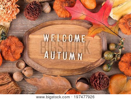 Wood plaque with welcome autumn text surrounded with colorful fall objects