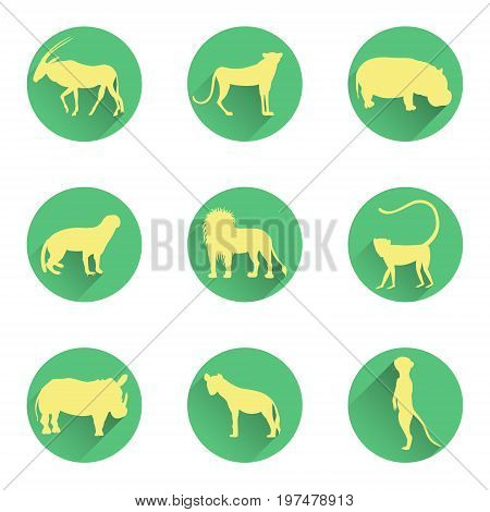 African Animals Silhouettes on the Round Substrates with Flat Shadows. Vector EPS 10
