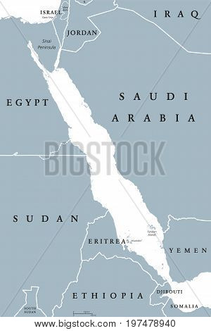 Red Sea political map. English labeling. Also called the Erythraean Sea. Seawater Inlet of the Indian Ocean between Horn of Africa and Arabian Peninsula. Gray illustration on white background. Vector.