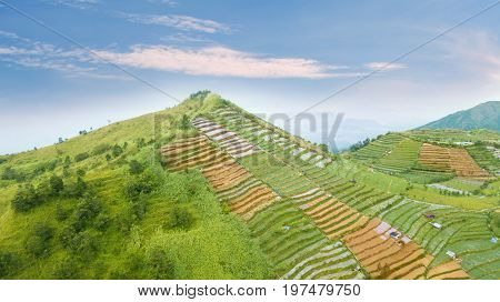 Beautiful aerial view of farmland with terraced system in the Dieng Plateau Central Java Indonesia