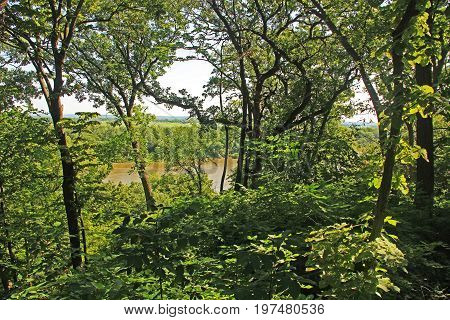 View of the muddy Missouri river as seen from a walking trail, through the lush wooded tree canopy in the Fontenelle Forest Nature Center in Bellevue, Nebraska near Omaha.