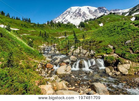 Summer day on Edith Creek, Mt. Rainier