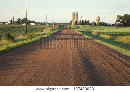 Rural Minnesota dirt road with farms in morning light