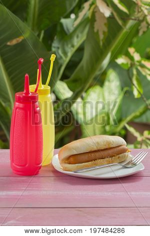 Hot dog on the plate / fast food