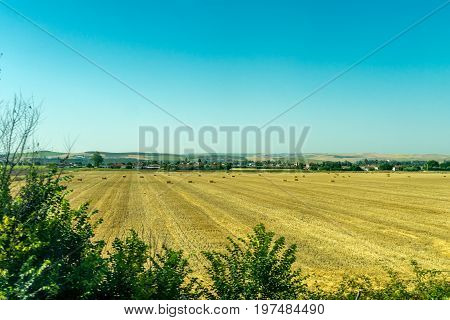 Bale Of Hay On A Field On The Outskirts Of Cordoba, Spain, Europe