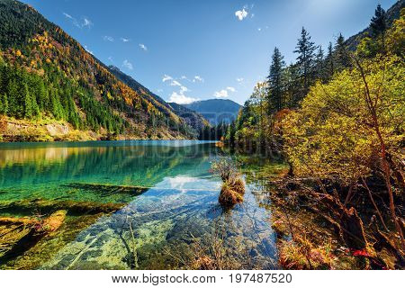 Scenic View Of The Arrow Bamboo Lake Among Colorful Fall Woods