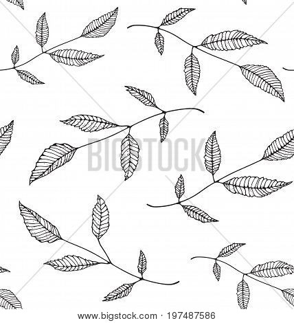 Nature floral decorative monochrome tileable backdrop for design on white. Vector illustration