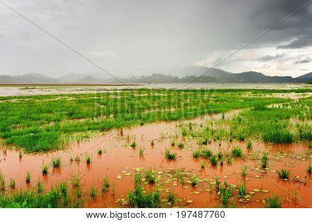 Amazing View Of The Lak Lake On A Rainy Day, Dak Lak Province