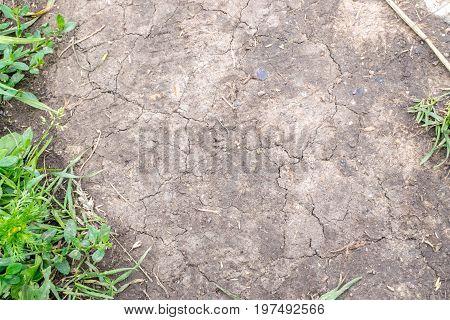 Wet Soil Background