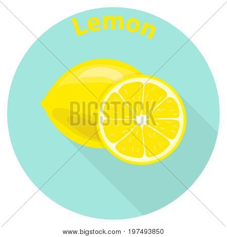 Lemon sliced slices of lemon citrus. Flat design vector illustration vector.