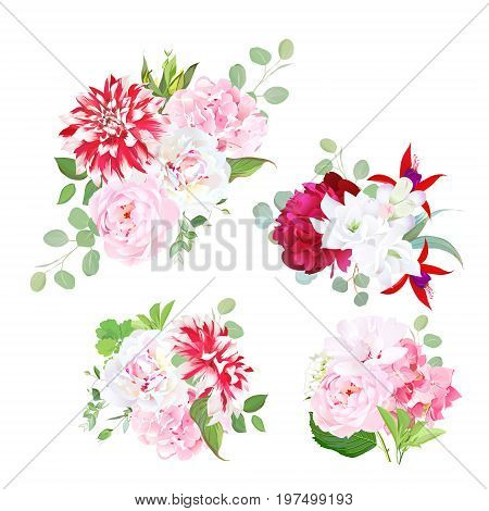 Garden delicate bouquets vector design objects. Pink roses, white freesia, burgundy red peony, hydrangea, posh motley dahlia, red fuchsia, eucalyptus. All elements are isolated and editable