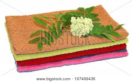 Branch Of Ashberry With White Flowers On A Pile Of Kitchen Towels