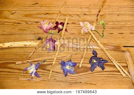 Dried Wilted Flowers On A  Dark Wooden Surface