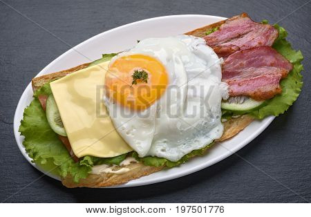 Sandwich with fried egg on a dark stone background