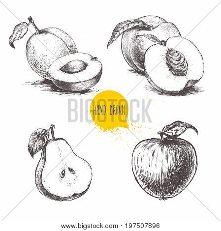 Hand drawn sketch style fruits set. Apricots peaches half pear apple. Bio food vector illustration collection isoalted on white background.