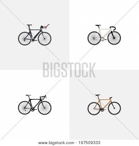 Realistic Timbered, Road Velocity, Exercise Riding And Other Vector Elements