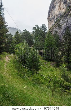 Mountains scenery nature landscape footpath for climbing at rain weather near the Bicaz gorge in Carpathians Romania cheile sugaului.
