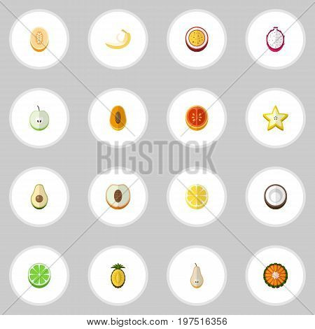 Set Of 16 Editable Fruits Flat Icons. Includes Symbols Such As Jungle Fruit, Marakuja, Watermelon And More
