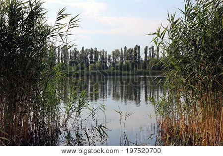 Park lake blue sky green lakeside calm